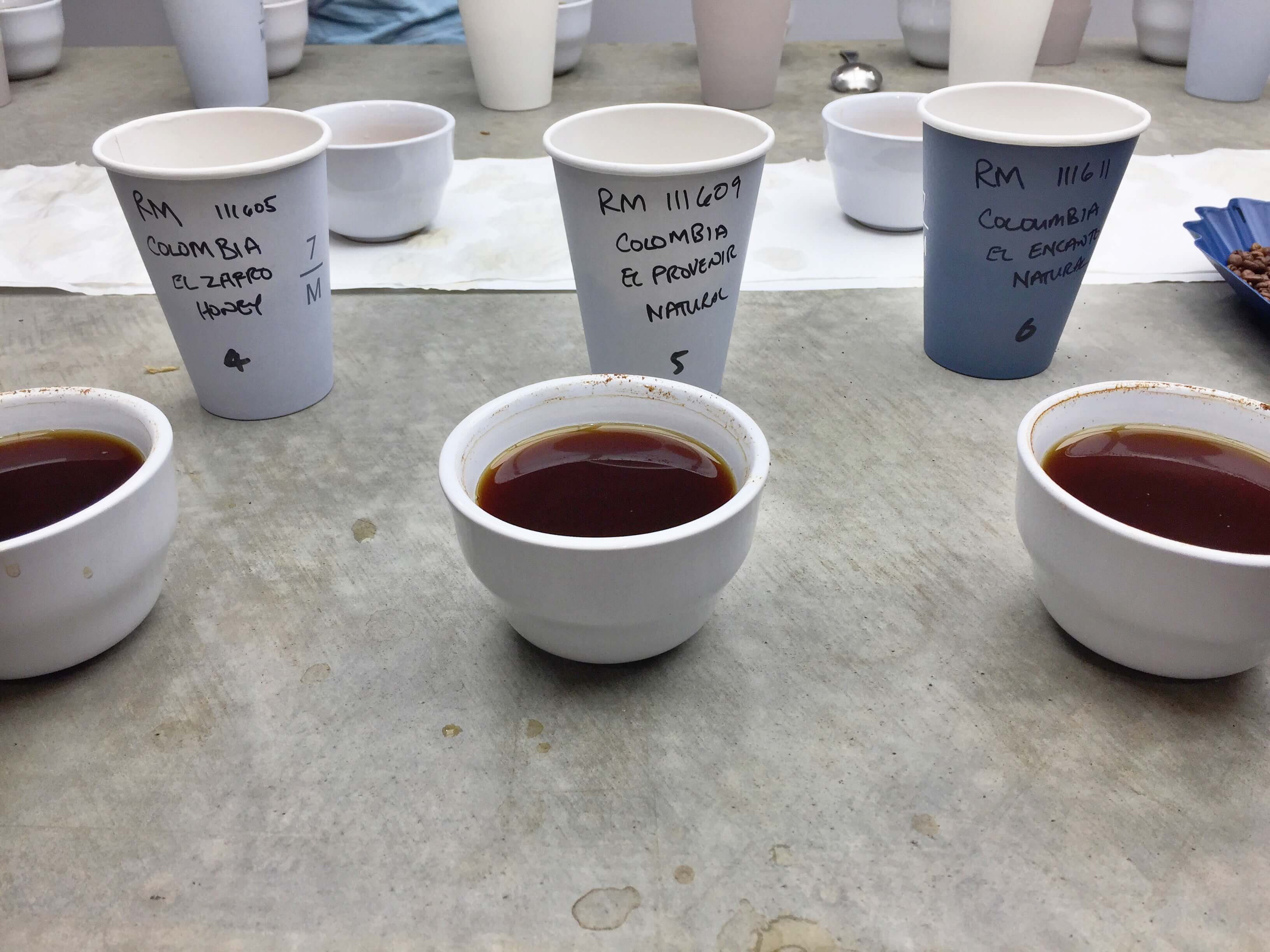 Cupping different coffee single origins