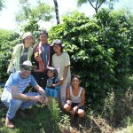 Experiencing the coffee production process in Sumatra
