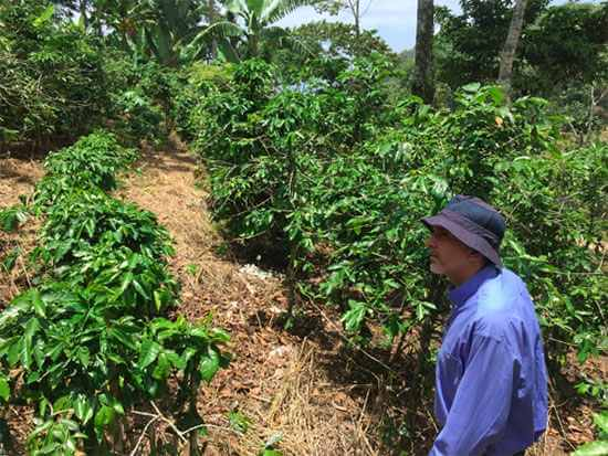 Coffee farmer in Honduras