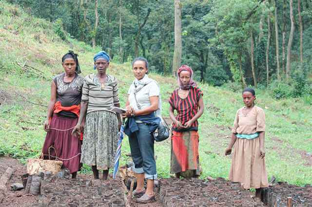 Ethiopia coffee plantation workers