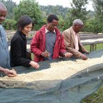 A Coffee Tasting Adventure in Kenya