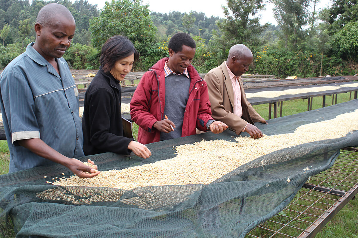Seven Miles - A Coffee Tasting Adventure in Kenya