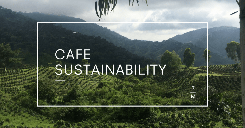 Cafe Sustainability