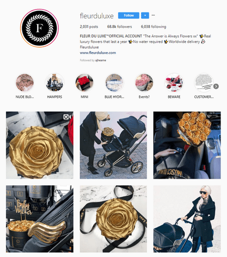 fleur du luxe instagram marketing