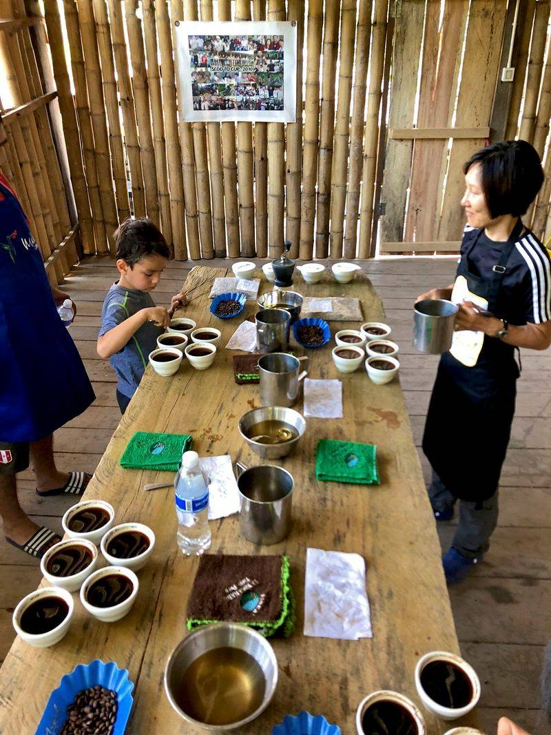 Coffee Field Report: Finca La Encanada, Peru 8